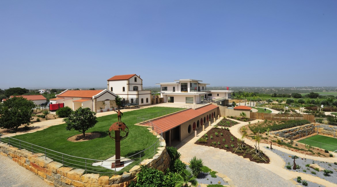 Luxury Estate with Vineyards